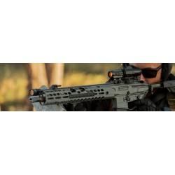 EXPRESS CHAPUIS JUXTAPOSE PROGRESS calibre:9.3x74R
