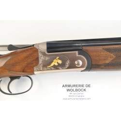 CARABINE GAMO Whisper IGT 19,9 Joules + lunette 3-9x40